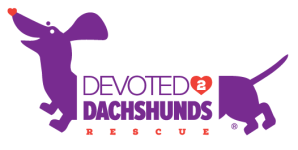 Devoted 2 Dachshunds Rescue ®